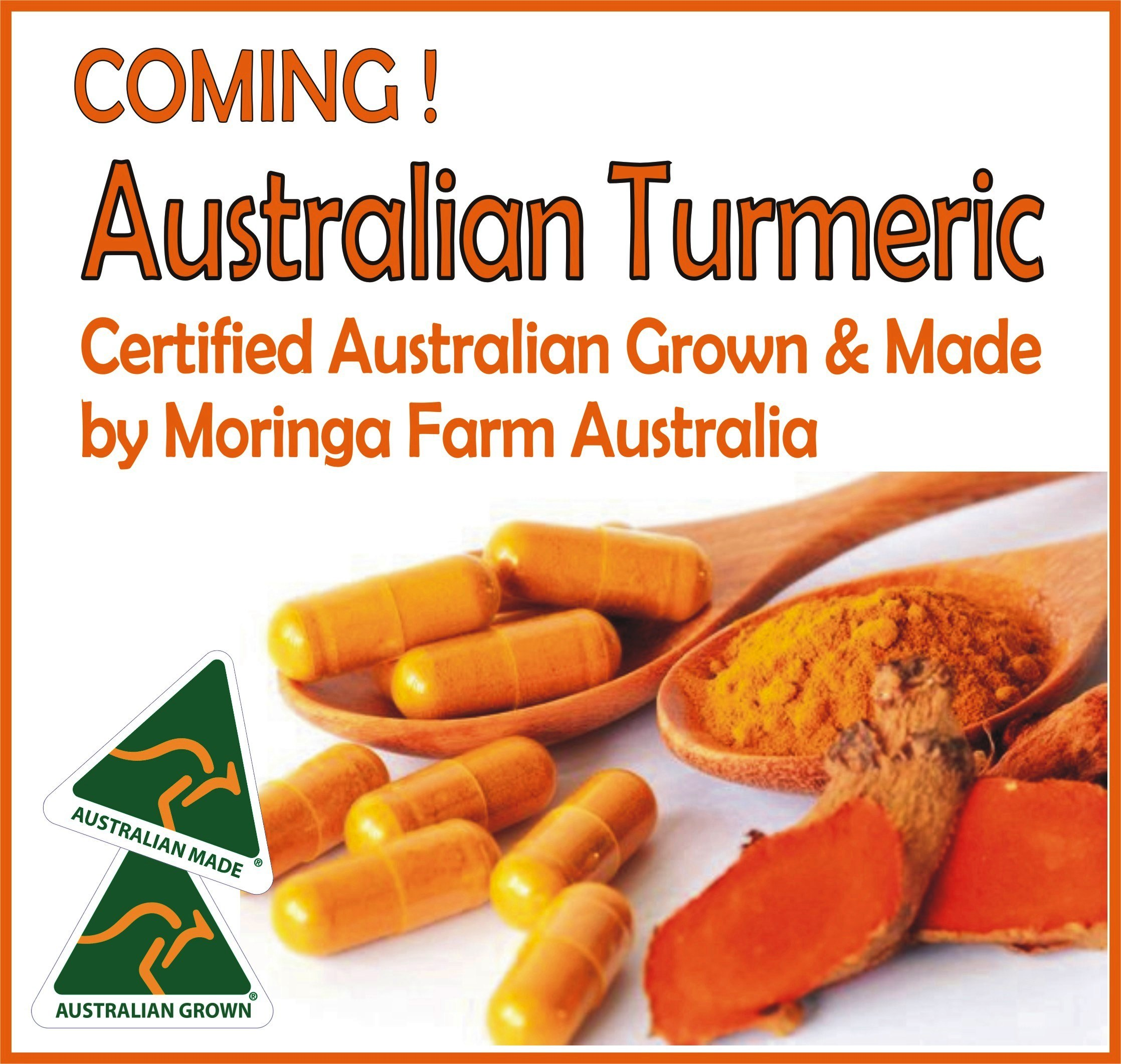 AUSTRALIAN TURMERIC from Moringa Farm Australia ( Retail quantities not yet available)