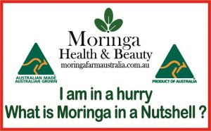 Moringa in a Nutshell, Cairns
