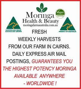 Fresh Weekly Harvested Cairns's Moringa